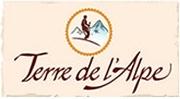 logo_tda_petit.jpg