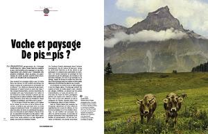 L'Alpe 48 Vache et paysage